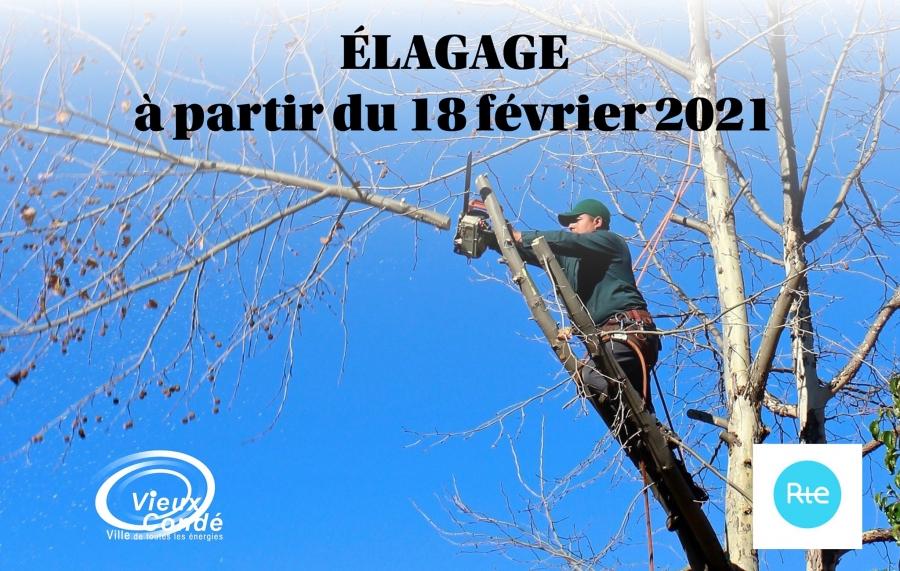 Elagage